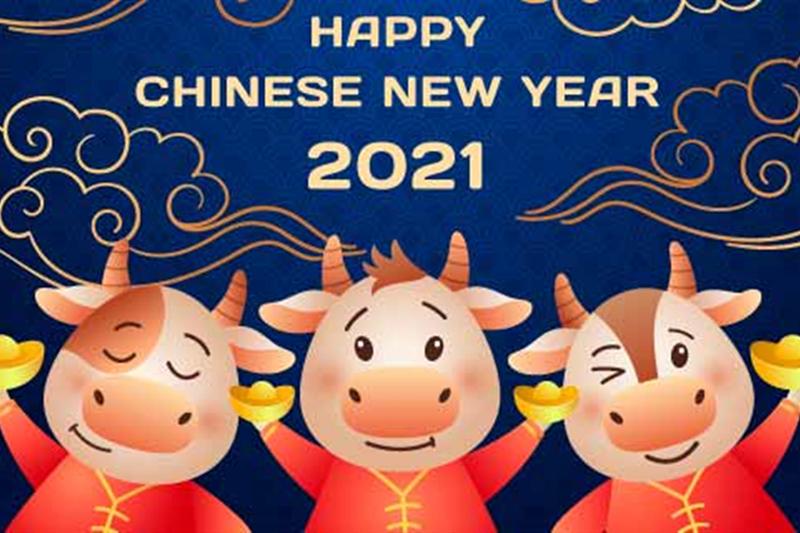 Vacaciones de año nuevo chino en SWY MOLD